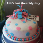 Life's Last Great Mystery!