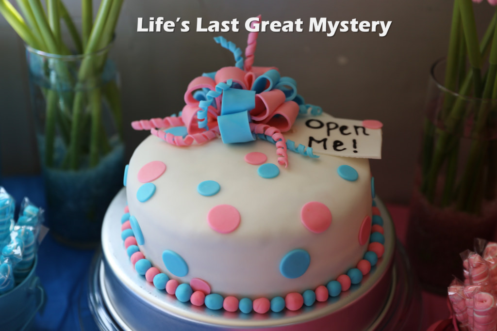Life's Last Great Mystery | Columbia SC Moms Blog
