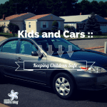 Kids and Cars :: Keeping Children Safe