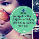 An Apple a Day ::  A Guide to Picking and Eating Apples This Fall!