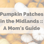 Pumpkin Patches in the Midlands :: A Mom's Guide