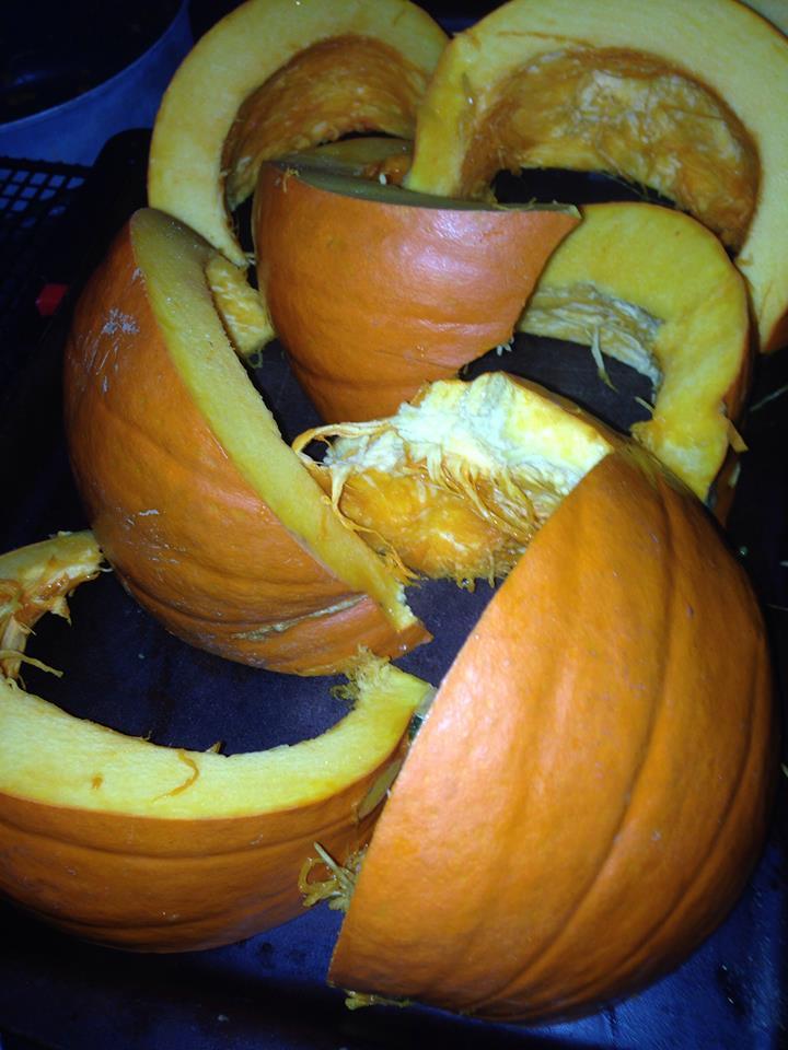 Pumpkin pieces, prior to roasting.
