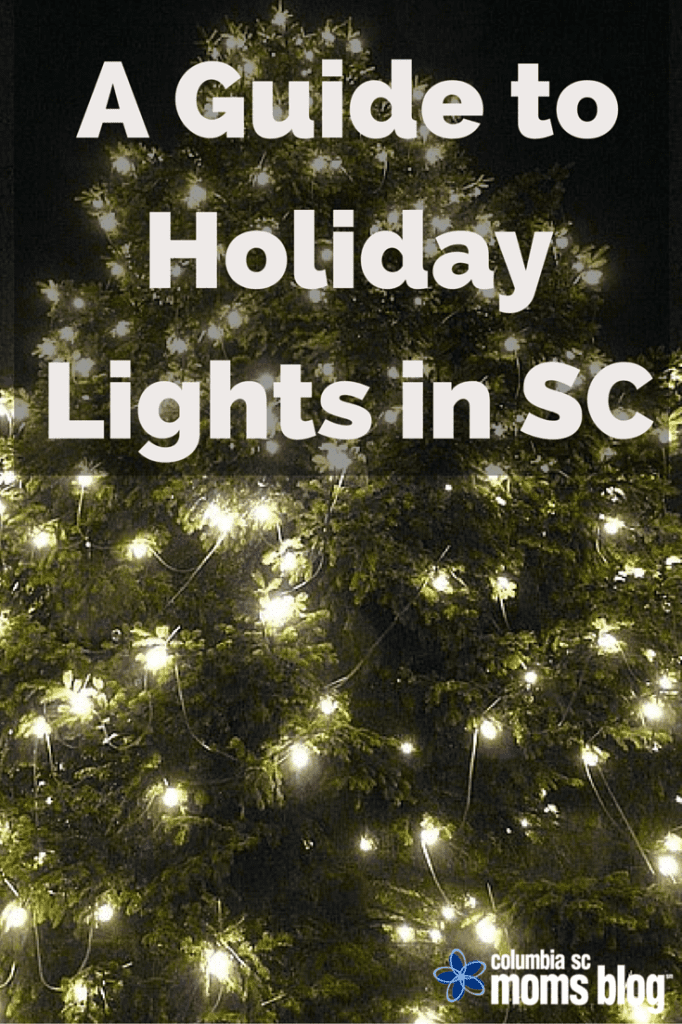 A Guide To Holiday Lights In SC - Christmas Lights In Sc