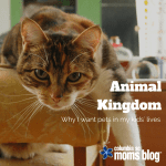 Animal kingdom :: Why I want pets in my kids' lives