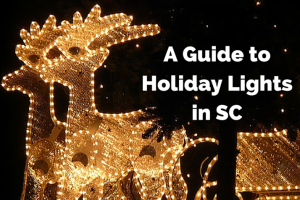guide to holiday lights in SC