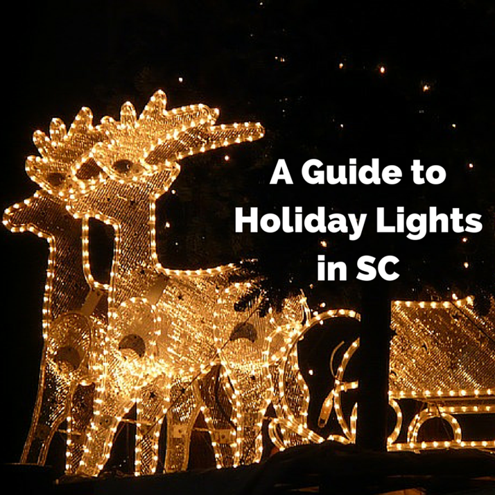Guide to Holiday Lights in SC | Columbia SC Moms Blog