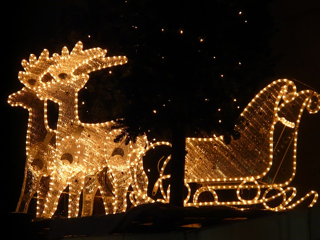 Where to See Holiday Lights in South Carolina | Columbia SC Moms Blog