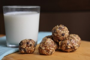 honey oat protein bites
