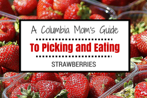 COLUMBIA MOMS GUIDE TO PICKING AND EATING STRAWBERRIES