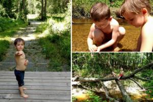 Fourteen mile creek trail in lexington perfect beginners hike