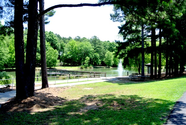 The Lowman Home`s Life Trail,a gorgeous and quiet park in Chapin