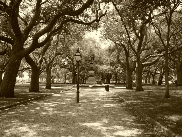 park-464367_640