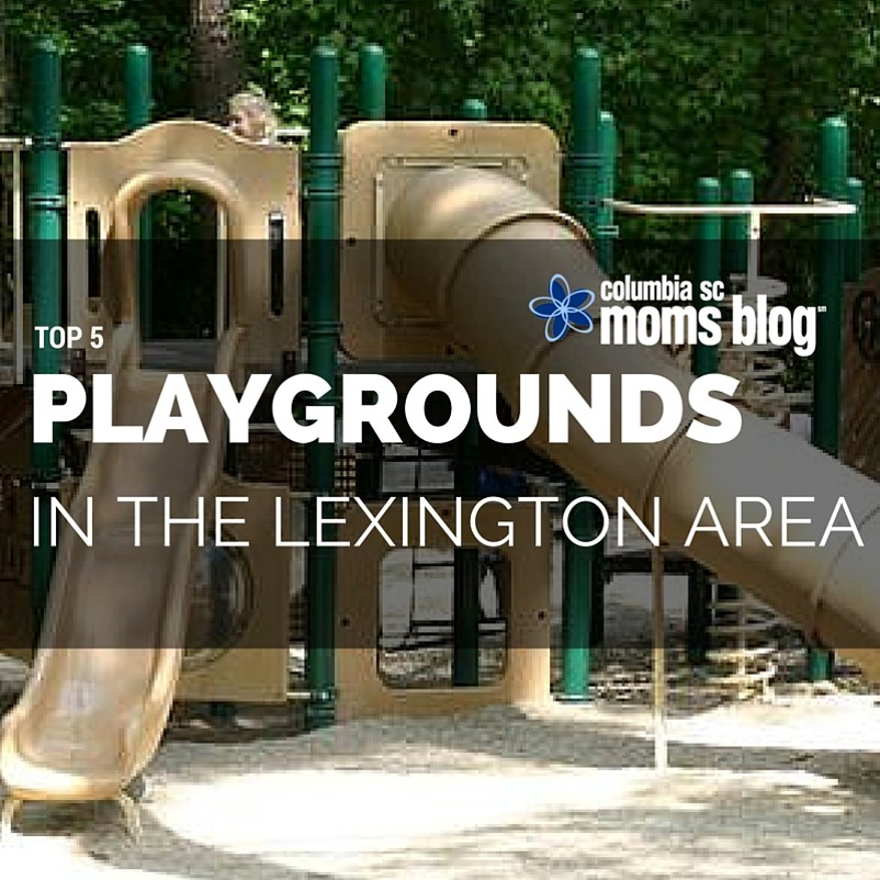 top 5 guide playgrounds in lexington