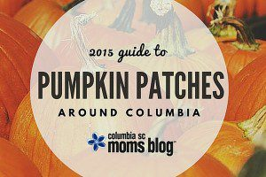 2015 guide to pumpkin patches around columbia - columbia sc moms blog