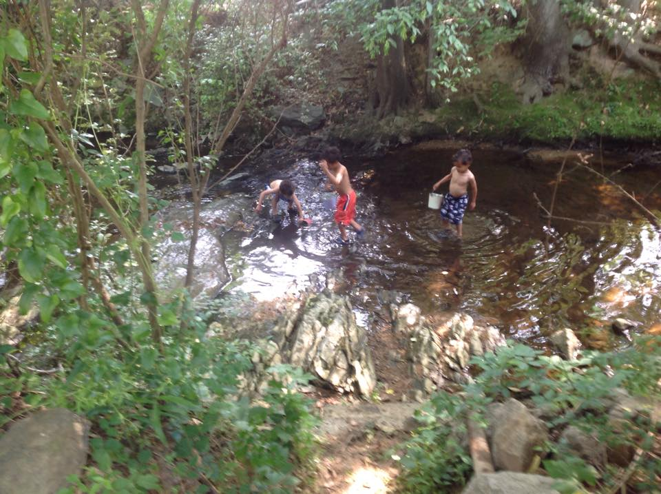 "This summer, my boys playing in the normally 3"" creek, which we climb down stairs about 6 feet to access. We were told they had dug it out years ago and added a drainage system to prevent overflow."