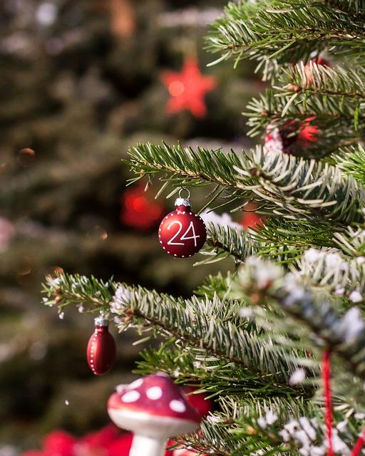 christmas-bauble-1016680_640
