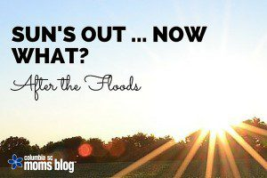 sun's out ... now what ... after the floods - columbia sc moms blog