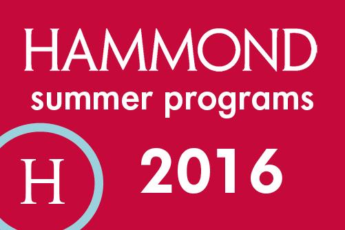 2016 Summer Badge