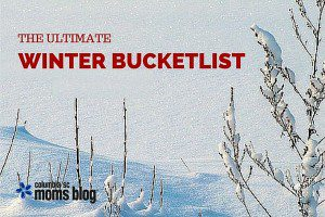 THE ULTIMATE WINTER BUCKET LIST - COLUMBIA SC MOMS BLOG