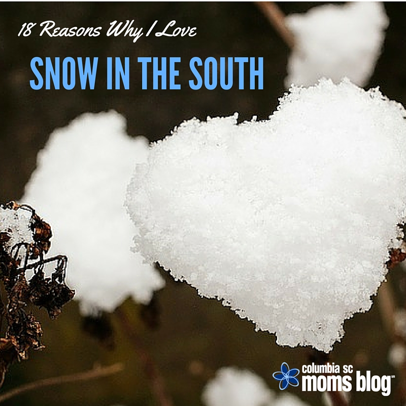 18 Reasons Why I Love Snow in the South - Columbia SC Moms Blog