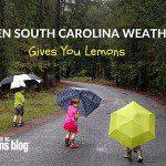 When South Carolina Weather Gives You Lemons…