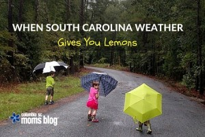 When SC Weather Gives You Lemons - Columbia SC Moms Blog