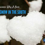 18 Reasons Why I Love Snow in the South