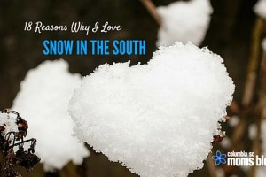 Why I Love Snow in the South - Columbia SC Moms Blog