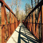 Timmerman Trail in Cayce :: A Great Local Hike For Kids