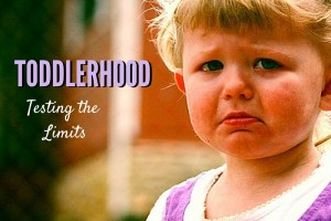 Toddlerhood - Testing the Limits - Columbia SC Moms Blog