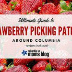 Strawberry Picking Patches Around Columbia {Recipes Included!}