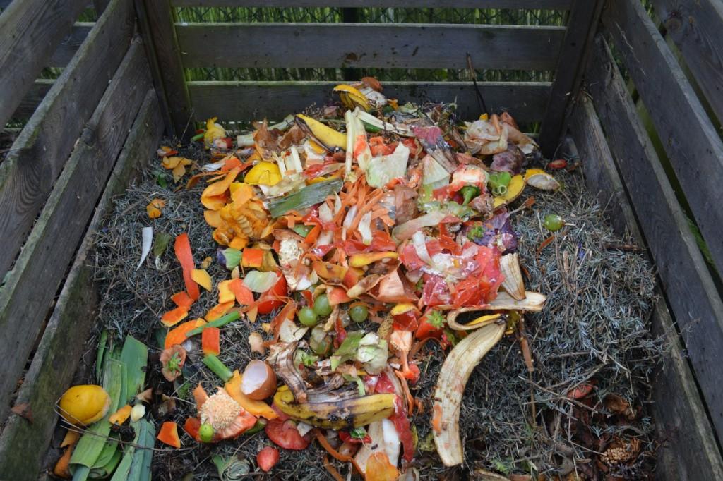 green-waste-513609_1920