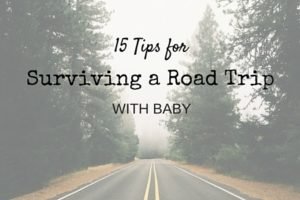 15 Tips for Surviving a Road Trip with Baby - Columbia SC Moms Blog