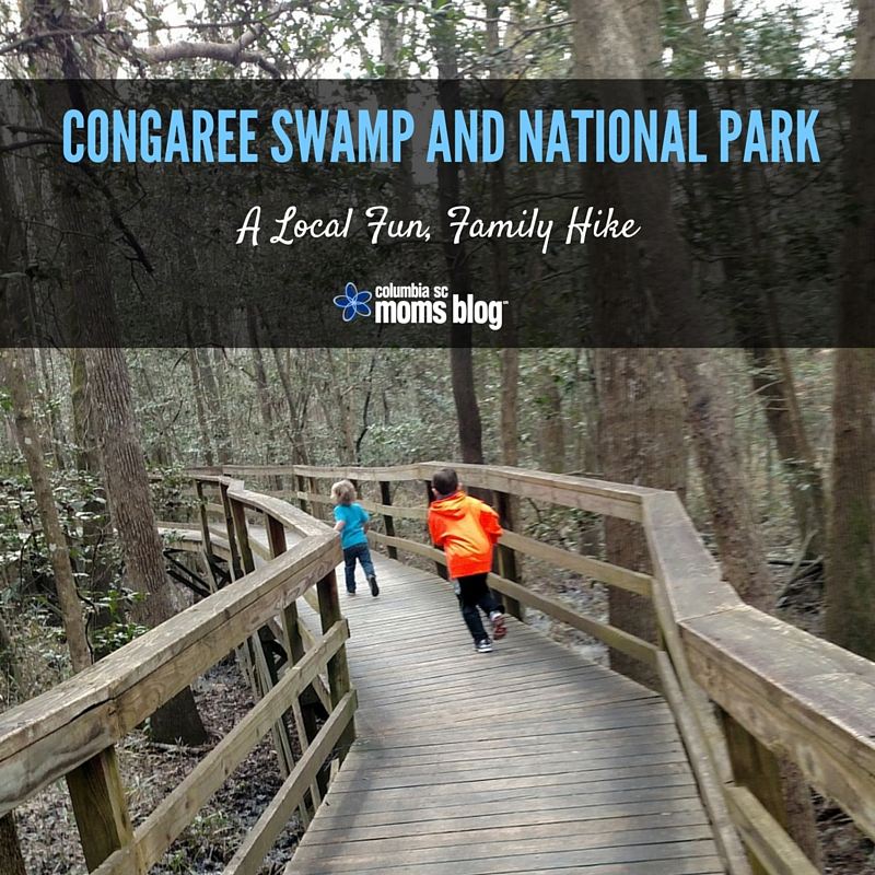 Congaree Swamp and National Park :: A Local Fun, Family Hike - Columbia SC Moms Blog