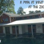 A Peek At What's New At Riverbanks Zoo
