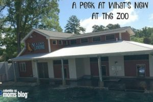 A Peek at What's New at Riverbanks Zoo - Columbia SC Moms Blog