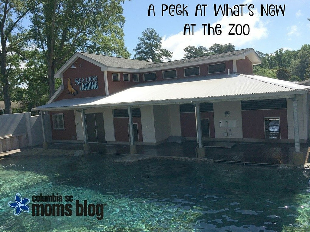 A Peek at What's New at the Zoo - Columbia SC Moms Blog