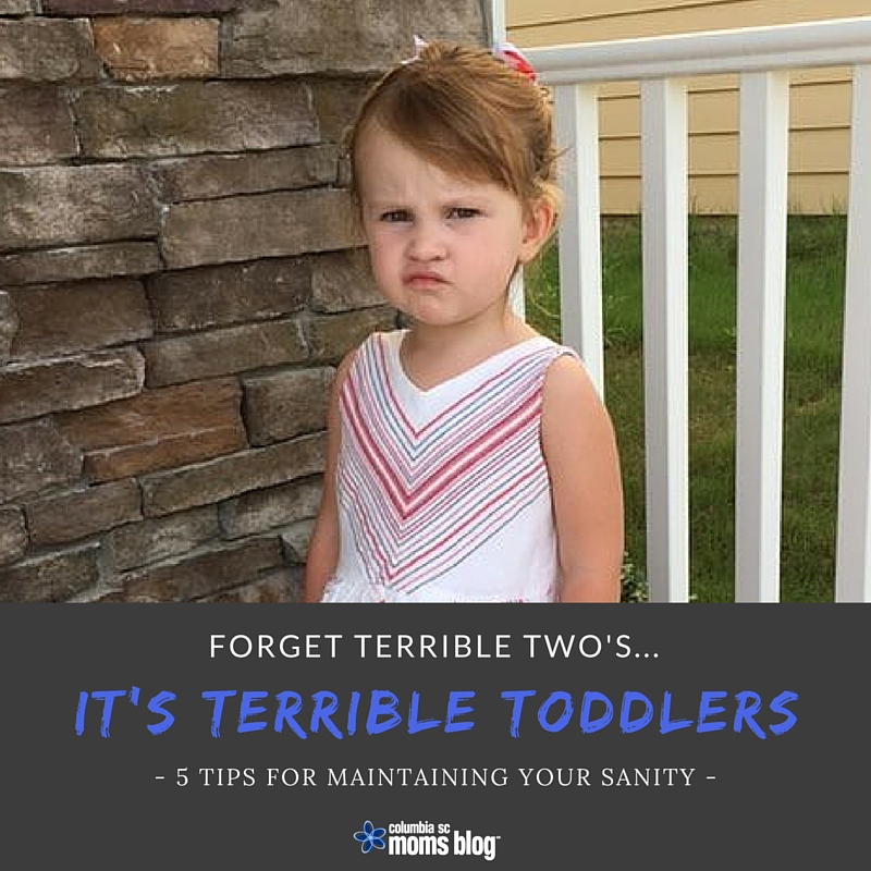 Forget Terrible Two's ... It's Terrible Toddlers - Columbia SC Moms Blog