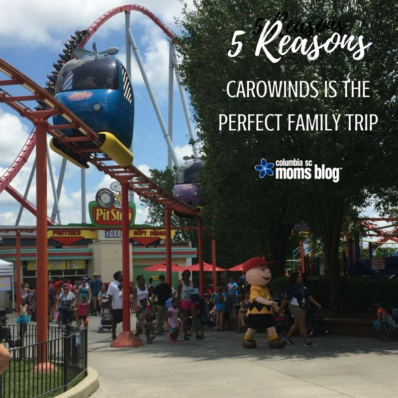 5 Reasons Carowinds is the Perfect Family Trip - Columbia SC Moms Blog