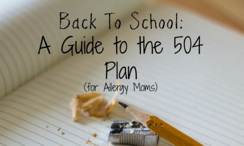 Back to School: A Guide to the 504 Plan (for Allergy Moms) - Columbia SC Moms Blog