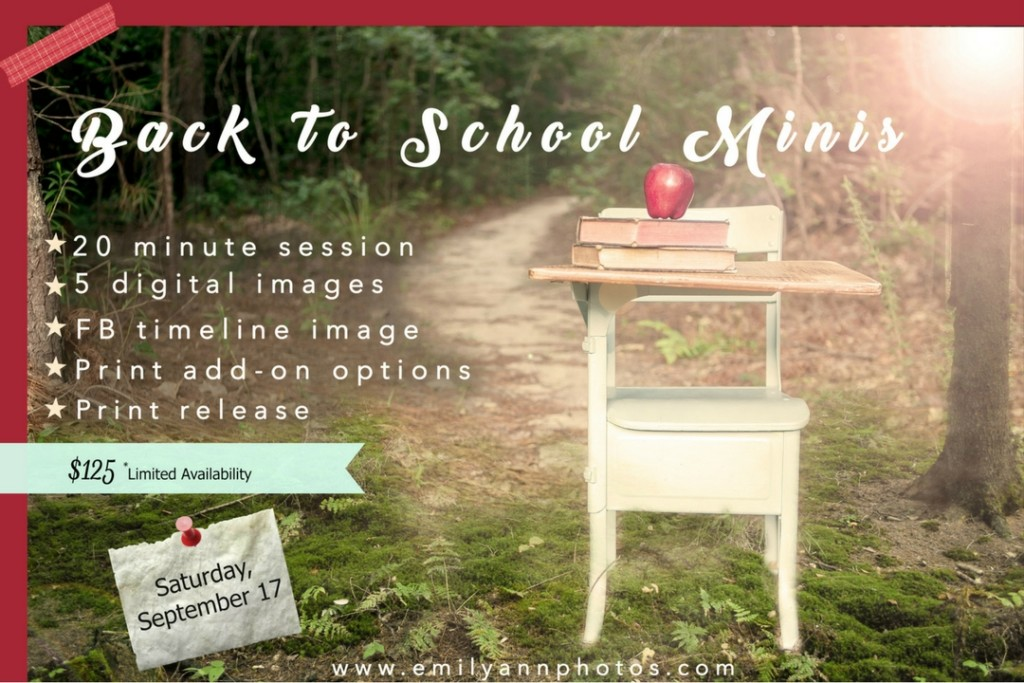 back to school minis - Emily Ann Photography & Columbia SC Moms Blog