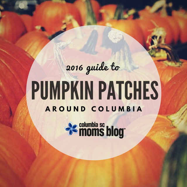 2016 Guide to Pumpkin Patches Around Columbia - Columbia SC Moms Blog