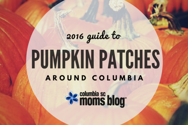 Guide to Pumpkin Patches Around Columbia- Columbia SC Moms Blog