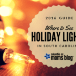 Where to See Holiday Lights in South Carolina {2016}