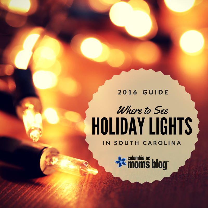Where to See Holiday Lights in South Carolina {2016} - Columbia SC Moms Blog