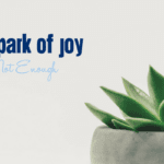 A Spark of Joy is Not Enough