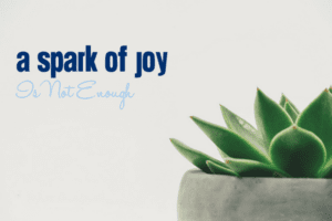 A Spark of Joy is Not Enough | Columbia SC Moms Blog