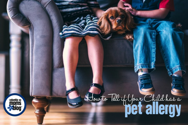 How to Tell if Your Child has a Pet Allergy | Columbia SC Moms Blog