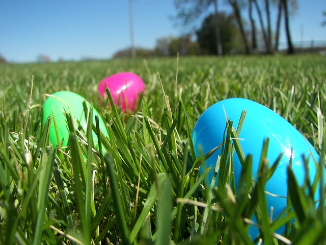 Easter Egg Hunt | Columbia SC Moms Blog