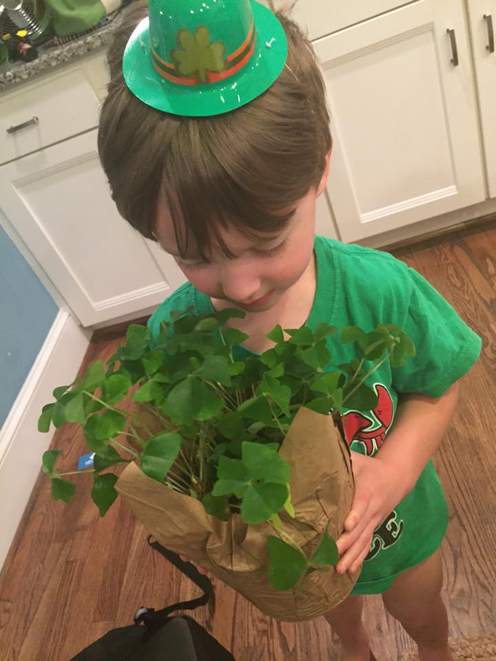 3 Ways to Make St. Patrick's Day Magical | Columbia SC Moms Blog